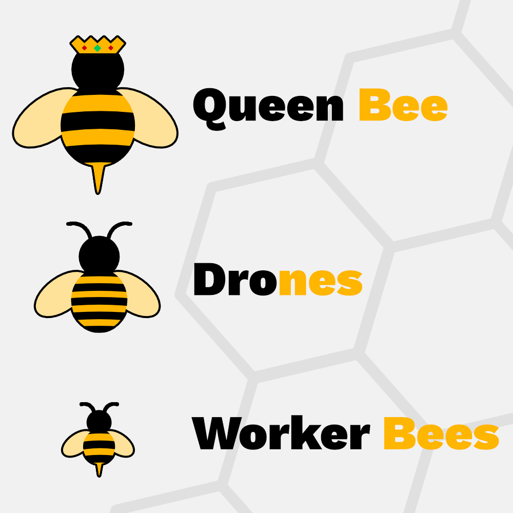 Hive Organisational Structure